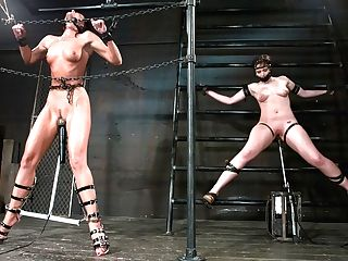 India Summer & Brooke Lee Adams In Two In A Cell Is Worth Morethan One With A Shaven Pubic Hair. -countdown To Relaunch - Six Of 20 - Devicebondag